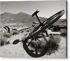 Desert Shadow Acrylic Print