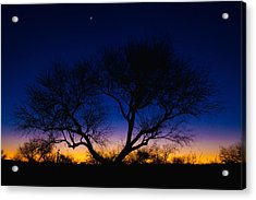 Desert Silhouette Acrylic Print by Chad Dutson