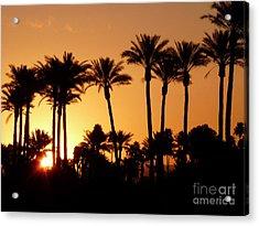 Desert Silhouette Sunrise Acrylic Print by Deborah Smolinske