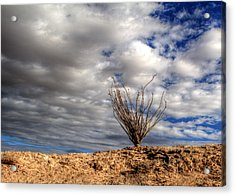 Acrylic Print featuring the photograph Desert Skys Number One by Jeremy McKay