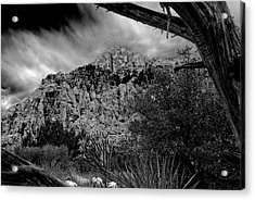 Acrylic Print featuring the photograph Desert Slendor by Chris McKenna
