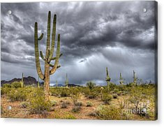 Desert Storm Arizona 2 Acrylic Print
