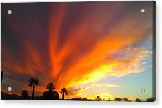 Acrylic Print featuring the photograph Desert Storm by Chris Tarpening