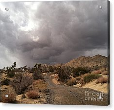 Desert Storm Come'n Acrylic Print by Angela J Wright