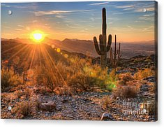 Desert Sunset II Acrylic Print