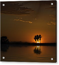Acrylic Print featuring the photograph Desert Sunset by Lynn Geoffroy