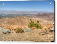 Desert View Acrylic Print by Deborah Smolinske