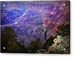 Desert View Sunset Acrylic Print