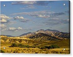 Desert Vista Acrylic Print