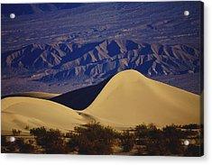 Desert Wave Acrylic Print by Michael Courtney