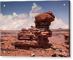 Desert Zen Acrylic Print by Janice Rae Pariza