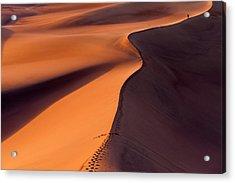 Desertwalk Acrylic Print