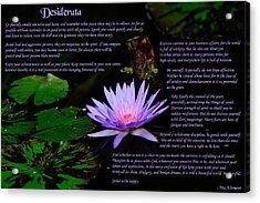 Desiderata 2 Acrylic Print