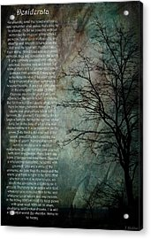 Desiderata Of Happiness - Vintage Art By Jordan Blackstone Acrylic Print by Jordan Blackstone