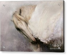 Acrylic Print featuring the painting Detail by Dorota Kudyba