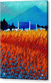 Detail From Golden Wheat Field Acrylic Print by John  Nolan