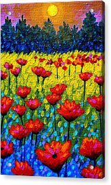 Detail From Twilight Poppies  Acrylic Print by John  Nolan