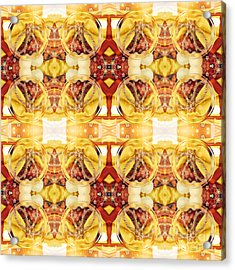 Detail Of Kimono Dress For Dogs Acrylic Print by Beverly Claire Kaiya