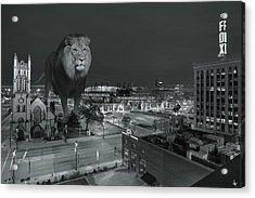 Detroit Lions Acrylic Print by Nicholas  Grunas