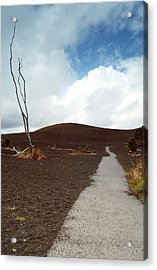 Acrylic Print featuring the photograph Devastation Trail by Mary Bedy
