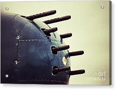 Devil Dog Guns Acrylic Print by AK Photography