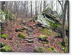 Devil's Den Stone Stairs In Autumn Acrylic Print by Tanya Harrison