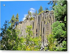 Acrylic Print featuring the photograph Devils Postpile by Marilyn Diaz