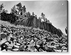 Devils Postpile National Monument Acrylic Print by Terry Garvin