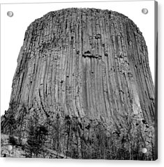 Devils Tower National Monument 3 Bw Acrylic Print by Elizabeth Sullivan