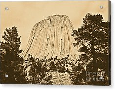 Devils Tower National Monument Between Trees Wyoming Usa Rustic Acrylic Print by Shawn O'Brien