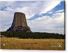Devil's Tower No.2 Acrylic Print