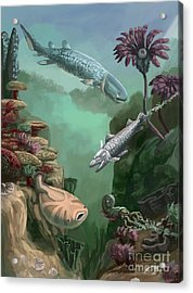 Devonian Period Acrylic Print by Spencer Sutton