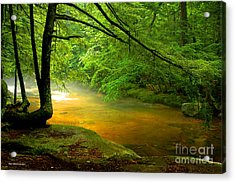 Acrylic Print featuring the photograph Diana's Bath Stream by Alana Ranney