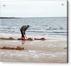 Digging On A Beach Acrylic Print