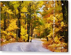 Acrylic Print featuring the photograph Fall Colors by David Perry Lawrence