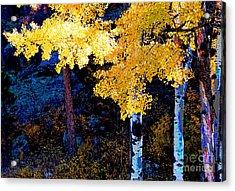Digital Aspen Acrylic Print