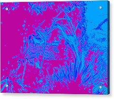 Digital Visual Acrylic Print by HollyWood Creation By linda zanini