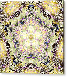 Digmandala Simha Acrylic Print by Derek Gedney