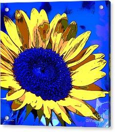 Dimensional Sunflower  Acrylic Print by Nancy E Stein