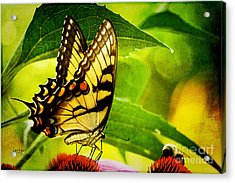 Dining With A Friend Acrylic Print by Lois Bryan