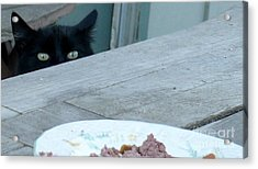 Dinner Time? Acrylic Print by Jacquelyn Roberts