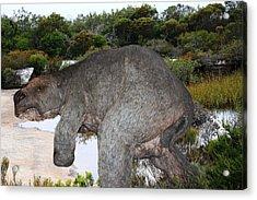 Acrylic Print featuring the photograph Diprotodon by Miroslava Jurcik