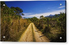 Dirt Road Acrylic Print by Aged Pixel