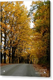 Dirt Road Colors Acrylic Print by Steven Valkenberg