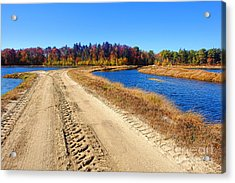 Dirt Road In Marsh Acrylic Print by Olivier Le Queinec