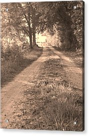 Dirt Road In Moultrie Georgia Acrylic Print by Cleaster Cotton