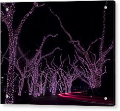 Acrylic Print featuring the photograph Disco Trees by Jim Snyder