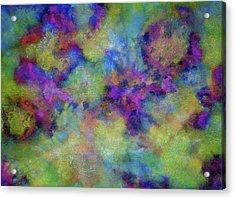 Discovery Acrylic Print by  Heidi Scott