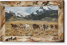Discovery Horses Framed Acrylic Print
