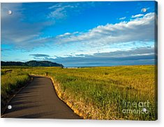 Discovery Trail Acrylic Print by Robert Bales